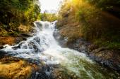 Amazing view of natural waterfall among green woods at sunset