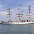 Постер, плакат: Sail training ship Dar Mlodziezy