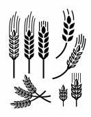 Pšenice ikona