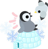 A pretty penguin baby and an igloo and a gull