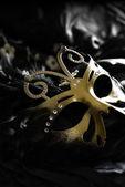 Tajné krycí maska