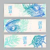 Three beautiful horizontal banners with a variety of shells and seaweeds
