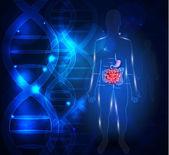 Magen-Darm-Trakt abstrakten wissenschaftlichen Hintergrund