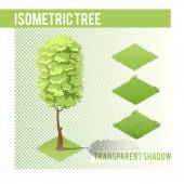 Isometric Tree  with transparent shadow for landscape design