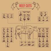 Vintage butcher cuts of beef diagram