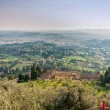 Постер, плакат: Panoramic view of Florence from Fiesole Tuscany Italy