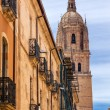 Постер, плакат: Stone Tower New Salamanca Cathedral City Street Salamanca Castil
