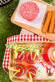 Letní piknik s malými uhlí grilu a rožnění