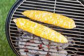 Kis nyári piknik a kukorica