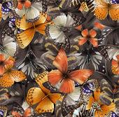 Seamless pattern from butterflies vector illustration clip-art