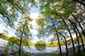 Kensington lake