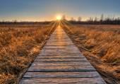 Prairie Boardwalk Sunset