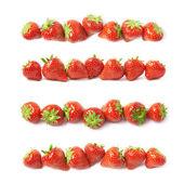 Linie červené jahody, samostatný
