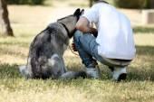 Mladý muž s krásnou Husky psa v parku