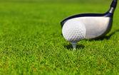 Golfovou hůl a míček na zelené trávě, detail
