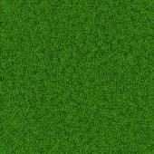 Fußball-Rasen