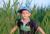 Young boy hiding in fresh green reeds