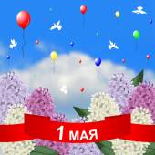Vector illustrations of May 1 congratulatory card with red ribbon lilacs branches on sky background