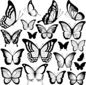 Butterflies black silhouettes isolated on white background