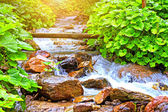 Cascade waterfall in national park. In the deep forest on mounta