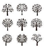 Silueta strom s kořeny a větve