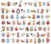 Mega sbírka kreslených zvířat v zájmovém chovu