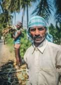 Dělník s druhý pracovník načítání cukrové třtiny