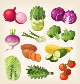Common and exotic groceries and all kinds of vegetables icons for market labels and education