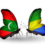 Постер, плакат: Butterflies with Maldives and Gabon flags