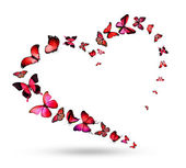 Heart with  flying butterflies