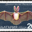 Постер, плакат: Stamp printed in Bulgaria