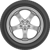 Isolated car tire  - vector illustration