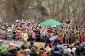 Orel, Oroszország, Maslenitsa fesztivál - 22 február, 2015-re: Knight sh