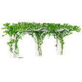 Wooden decorative element for the gardening with ivy pergola