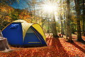 Two tents in the autumn forest