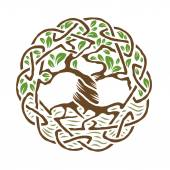 Illustration of celtic tree of life  color version vector illustration