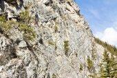 Szikla mászó a Sziklás-hegység