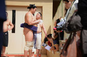 Neidentifikovaný zápasníci Sumo