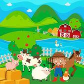 Mezőgazdasági termelő és a farm állatok a farmon
