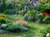 Giardino con un sacco di fiori in estate