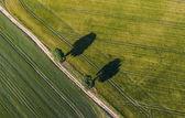 Letecký pohled na polích