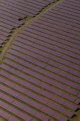 Letecký pohled na solární elektrárny