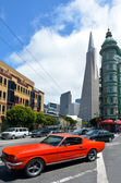 Transamerica Pyramid in San Francisco - California USA