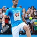 Постер, плакат: Ten times Grand Slam champion Novak Djokovic of Serbia practices for Australian Open 2016