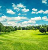 Golf field and blue cloudy sky. Beautiful landscape with green g