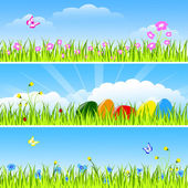 Set of three horizontal drawings - easter eggs green grass flowers and insect on blue sky clouds and sun background vector illustration
