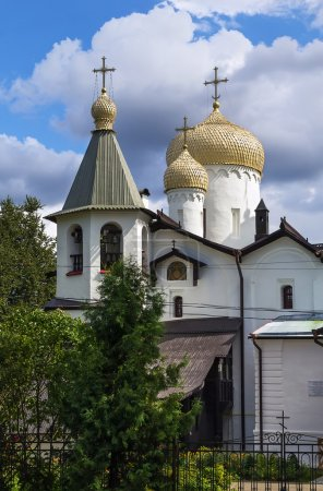 Постер, плакат: Churches of St Philip and St Nicholas Veliky Novgorod, холст на подрамнике