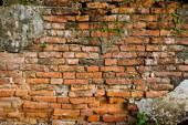 Moldy brick wall background