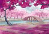 Jaro. Třešňový květ. Japonská zahrada