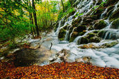 Majestic view of a deep forest waterfall on a sunny autumnal day in Plitvice National Park, Croatia